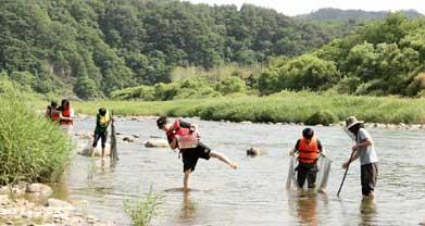 인북천 생태체험